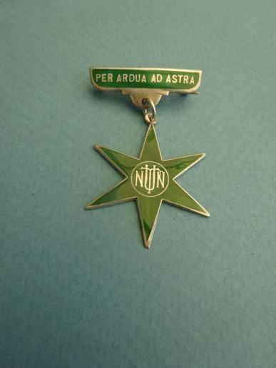 National Union of Trained Nurses,silver members badge
